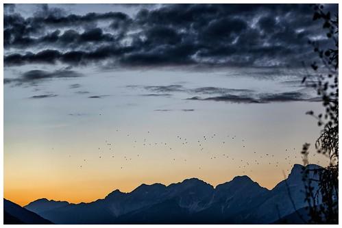 autumn color olivergalvan alpine alpsintyrol austria eveningmood panorama evening clouds bluesky bluehour sunset sundown golden fields nature mountains axams galvanol landscape cloudformation