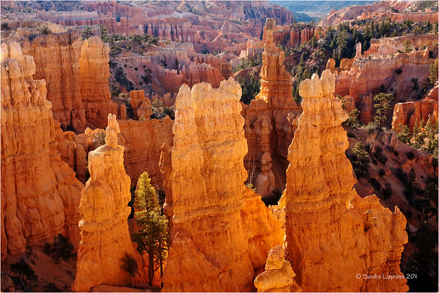 Fairyland Canyon