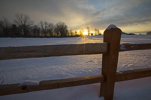 weekend fence life saturday winter sunrise beautiful sun farm canon 2019 light fun love adventure morning