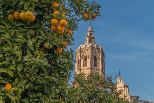 Valencia   by Diaz Villanueva