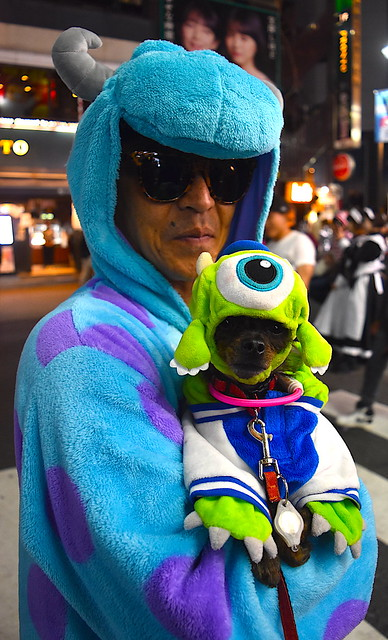 Dog and its human enjoy Halloween in Tokyo