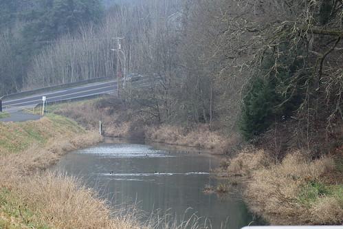 water ditch dike