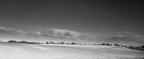 Winter field   by aiddy
