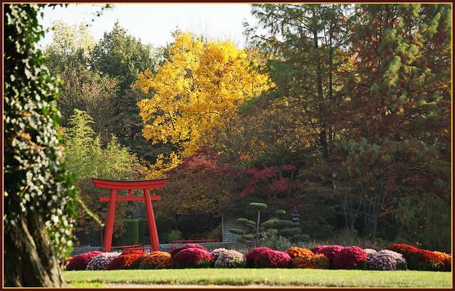 Zauberhafter Herbst ...