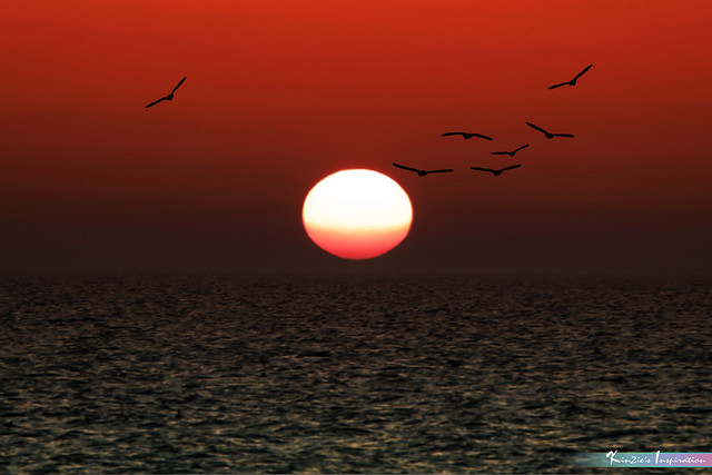 Rising Sun at Dawn *A Beautiful Nature*