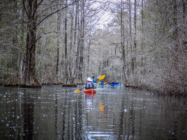 Old Santee Canal-16