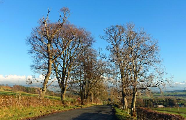A walk along Beacon Edge. Penrith