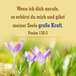 Psalm 138,3
