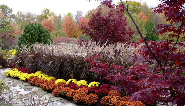 Autumn Colors at Frederik Meijer Gardens & Sculpture Park, Grand Rapids, Michigan