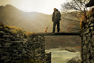 Love across the gap. Tog and dog. | by PentlandPirate of the North