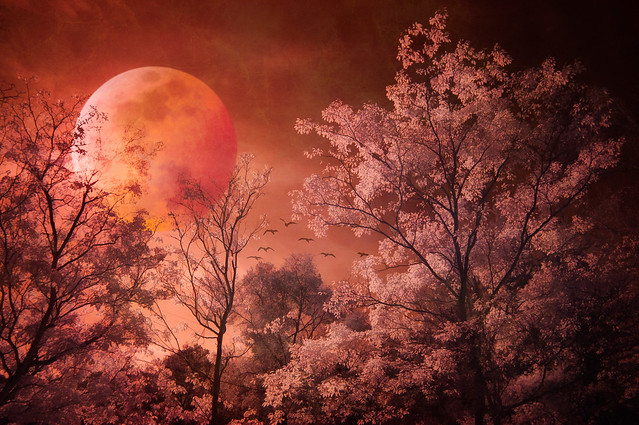 Blood Moon Rising - Textured