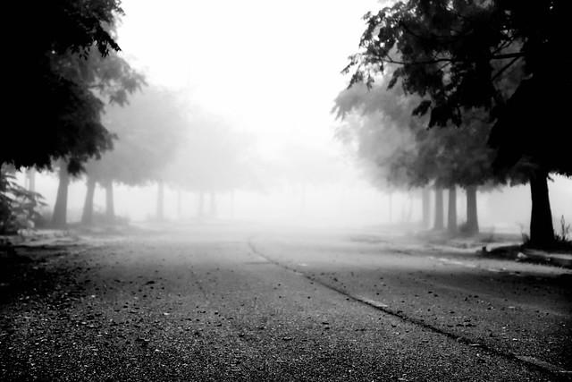 Fully fog