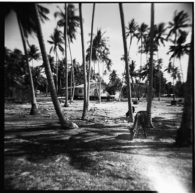Terengganu : The Village