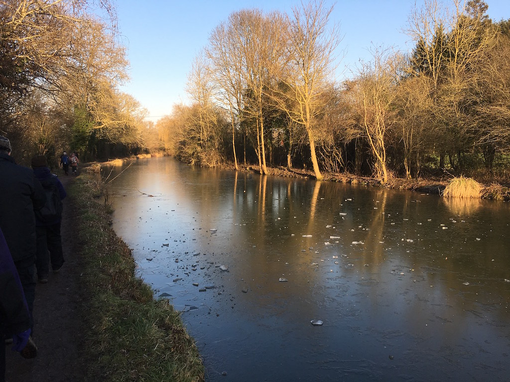 Frozen canal Hook to Winchfield walk
