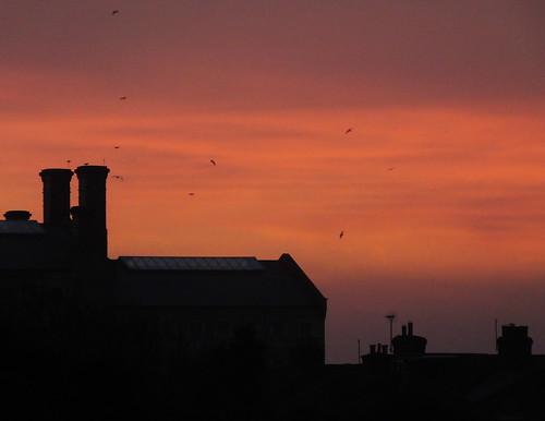yoiportland portlandconvictprison portland dorset weather storm sunrise dawn redsky