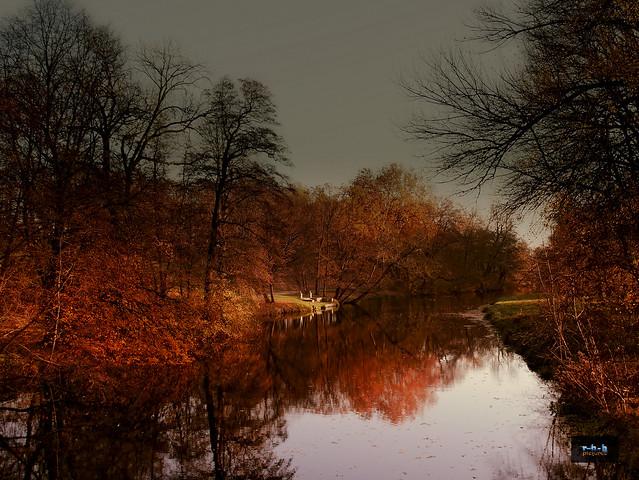 Autumn Walk - 3_P1090830