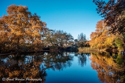 burystedmunds suffolk autumn trees colours colour reflections lake landscape fujifilm xe2 voigtlander 15mm