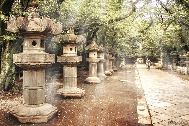Tōshō-gū Shrine, Stone Lanterns Pathway, Ueno - Tokyo (Japan)