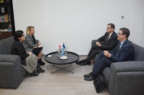 სახალხო დამცველი გერმანიის ფედერაციული რესპუბლიკის ელჩს შეხვდა 27.11.18 Public Defender Meets with Ambassador of Federal Republic of Germany