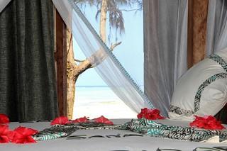 Reef & Beach Resort room | by Paradise & Wilderness
