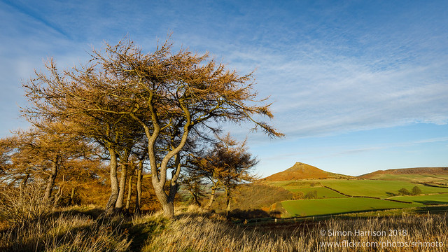 Roseberry Topping from Gale Rigg