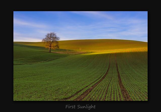 First Sunlight