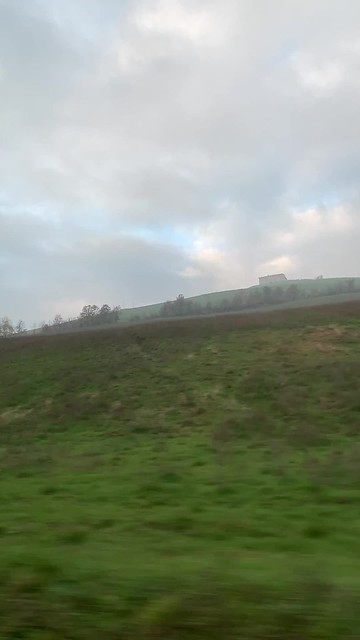 Driving to Rovagnati, seeing the rolling green hills of Parma