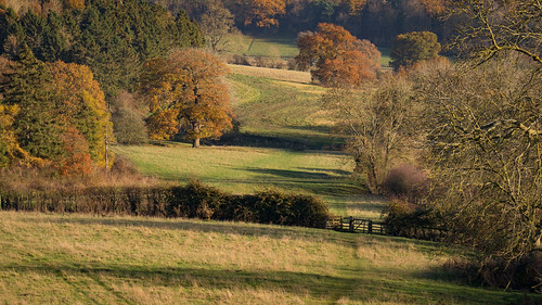 A Fine Afternoon | by Paul Kaye