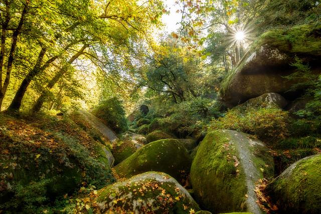 Forêt d'Huelgoat