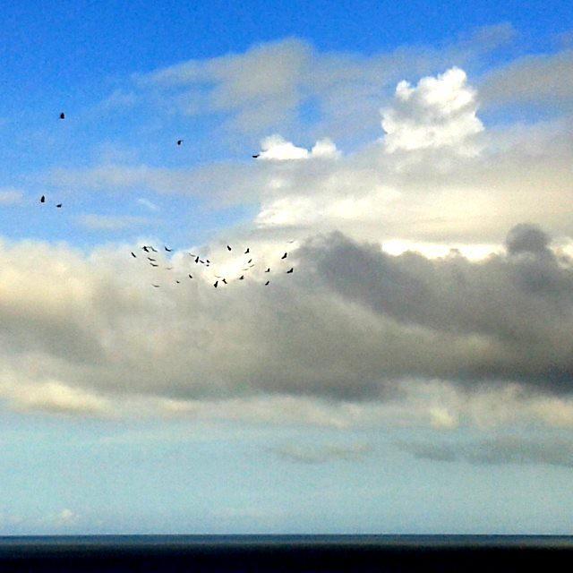 C I E L O S / Sky  #Naiguata #nubes  #devenezuelasoy #clouds  #playa  #ElNacionalWeb  #sky  #lookingforTheSunshine #CostasVenezuela #colours   #sea  #beach   #nature  #skyconcepto #ig_vargas_