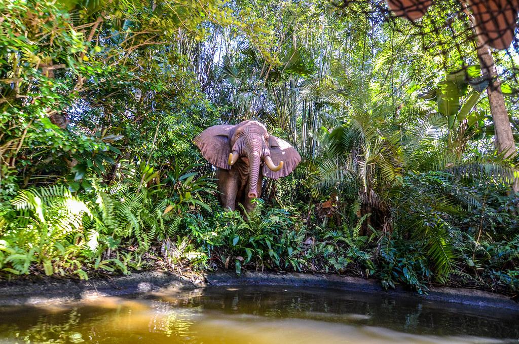 Elephant Jingle Cruise MK