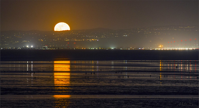 The Rising Moon Prepares to Light Up the SF Bay
