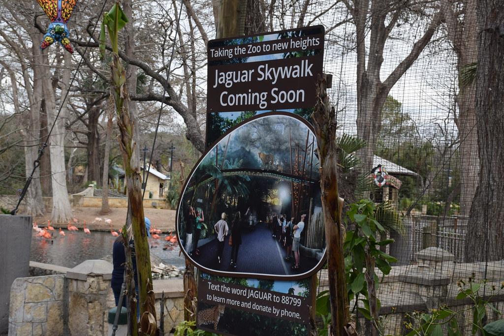 Jaguar San Antonio >> Jaguar Skywalk Sign San Antonio Zoo Tx Karen Flickr