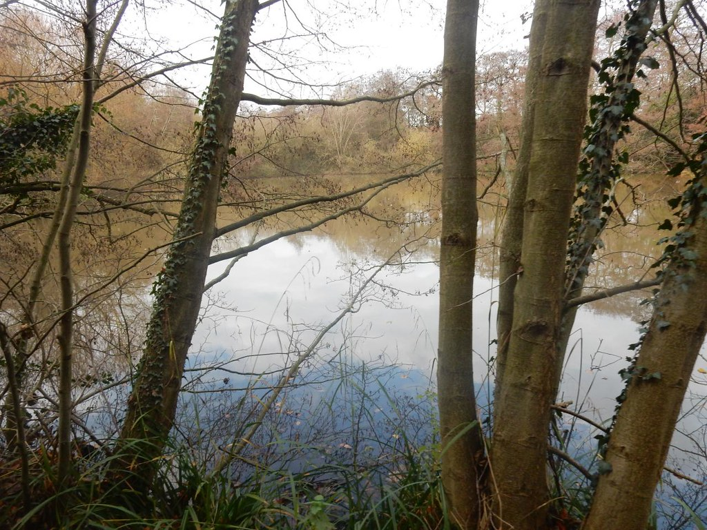 Lake Totteridge Circular