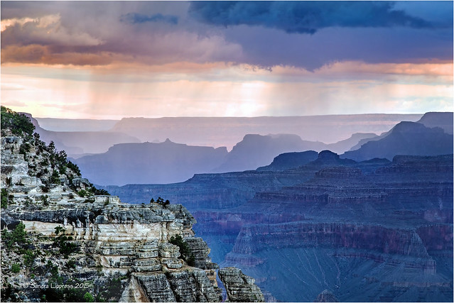 Mather Point in the Rain