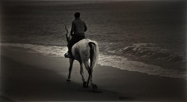 Cabalgando por la playa