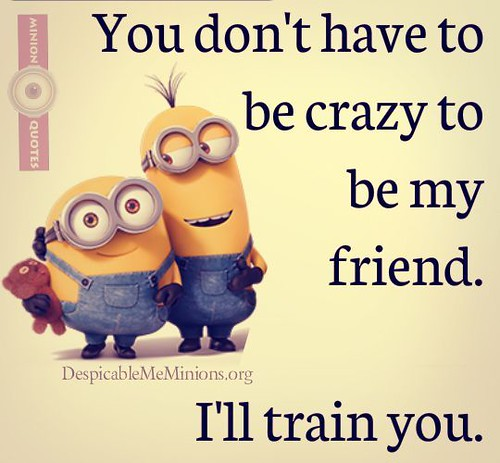 top minions friendship quotes top minions friendship flickr