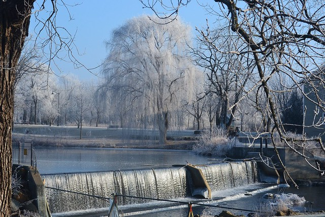 Frosted Willow & Dam - Full View - Beloit, WI