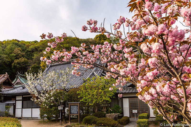 Complejo del templo Taisanji