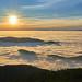 Nebelmeer im Rheintal by Benni's Fotobude