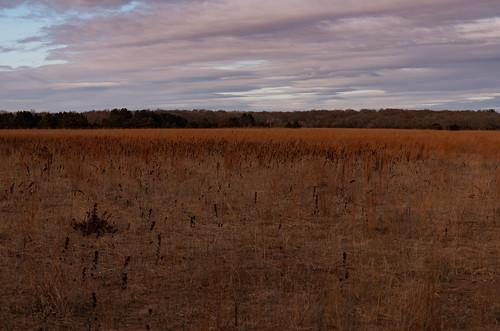 minnesota november wildriverstatepark autumn fall nature prairie statepark sunset northbranch unitedstates us