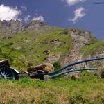 Italian farm truck