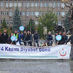 14 November efficiency in all cities in Turkey