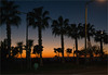 Abend unter Palmen by Niemann-Buuts