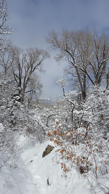 Jessie Weaver Trail, Colorado