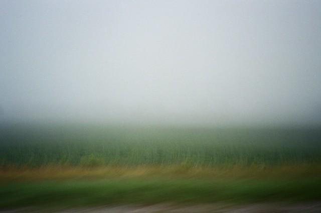 Sometimes Life's a Blur