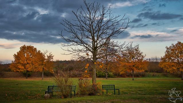 Treffpunkt im Herbst