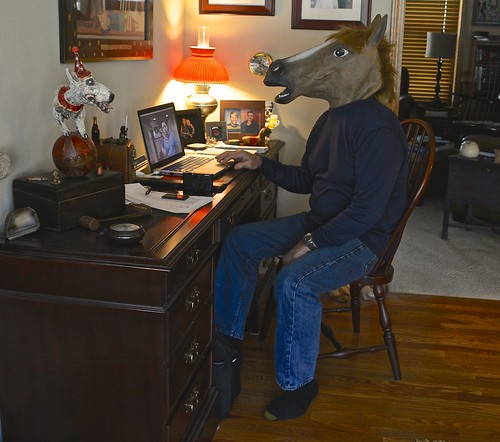I Often Like to Wear a Horse Mask When Working on My Computer at Home   by ricko