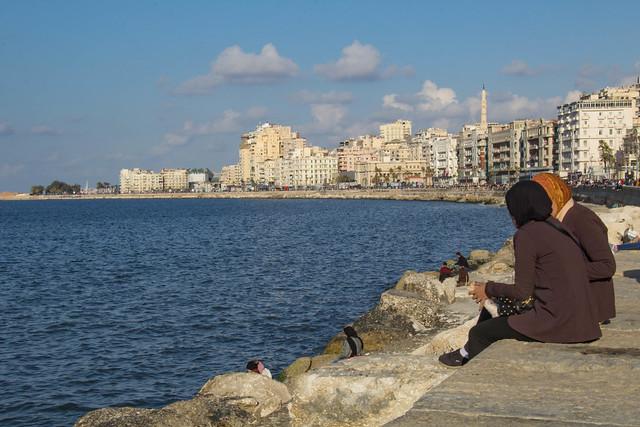 Alessandria d'Egitto, Corniche 12