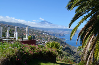 Las Terrazas del Sauzal, Tenerife   by BuzzTrips